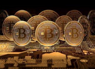 crime/bitconnect-company-lured-investors-by-promising-1-percent-return-said-cid