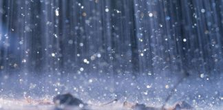 rain-will-arrive-in-gujarat-in-second-half-of-june