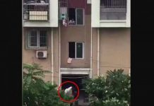 atest-news/international-news/asia/china-toddlers-neck-stuck-in-window-grill