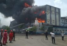 south-gujarat/fire-in-maruti-dyeing-in-pandesara-gidc-sura