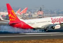 ahmedabad-news/spicejet-flight-suffers-tyre-burst-at-ahmedabad-airport