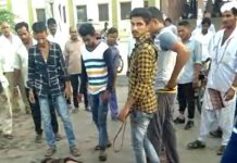 saurasthra-kutch/two-thrashed-over-suspicion-of-kidnapping