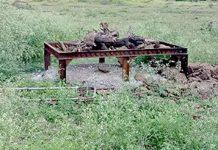 news/SAU-RJK-HMU-LCL-75-year-old-woman-murder-in-hadamatiya-village-of-sardhar-gujarati-news-